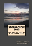 2015 Storm Cycle Cover_jpe